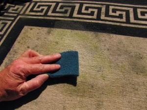 Garden Grove carpet cleaners